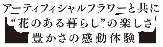 【待望★】 【スーパーSALE限定クーポン発行中 MELLOW! 板】ニーデッカー(NIDECKER) スノーボード 板 (メンズ) 19-20 MELLOW (メンズ), 株式会社澤野商店-:12f98884 --- plus-1-tire-pros.demosites.myshopmanager.com